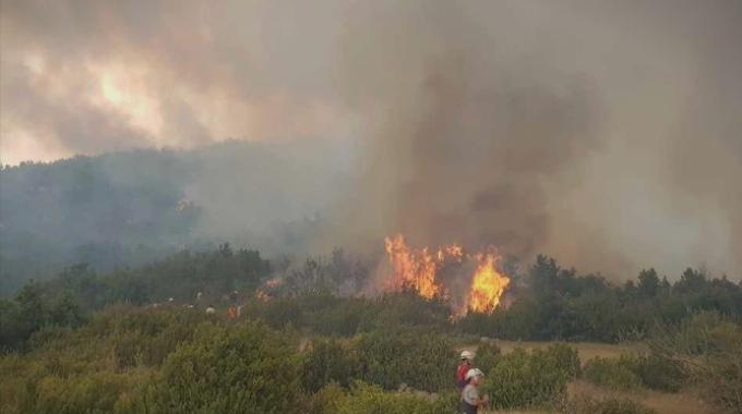Голем пожар веќе два дена беснее во Мала Преспа