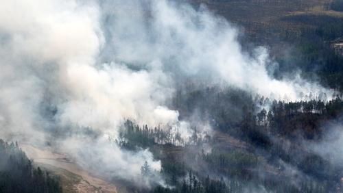 Пожарите во Сибир зафатија 4,3 милиони хектари