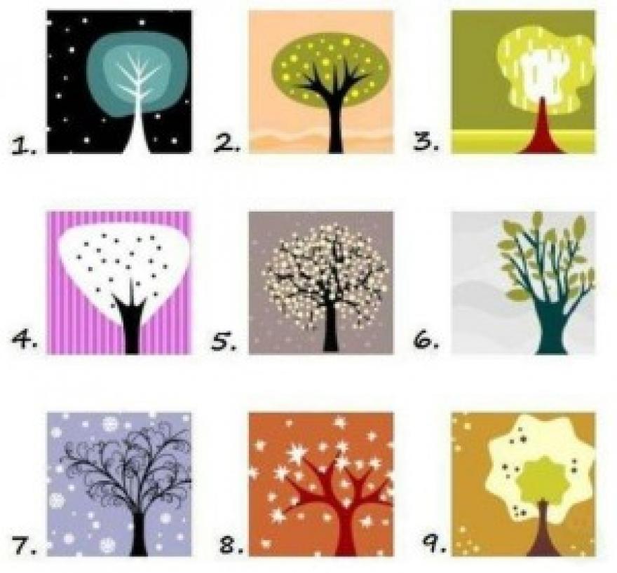 Одберете дрво и дознајте нешто за себе