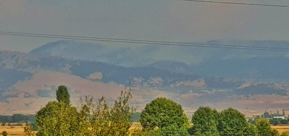 ФОТО: Пет дена гори кај мариовското село Брник