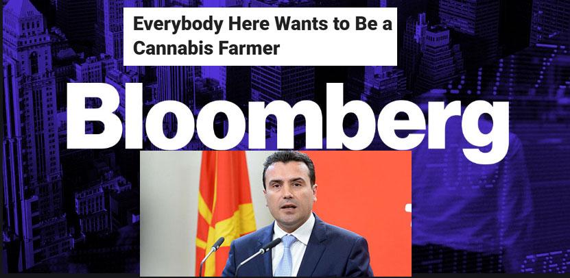 """Американски """"Блумберг"""": Трајче Заев, братучедот на премиерот, одби разговор за бизнисот со марихуана, Македонија има голем проблем со корупцијата"""