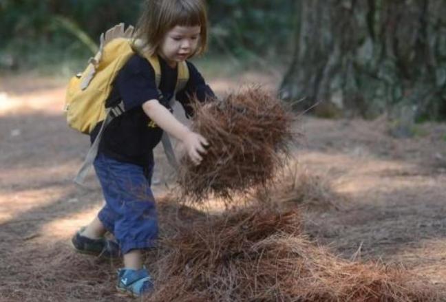Отворена шумска градинка во Хрватска: Децата лутаат во природа, немаат пластични играчки, самите ги прават