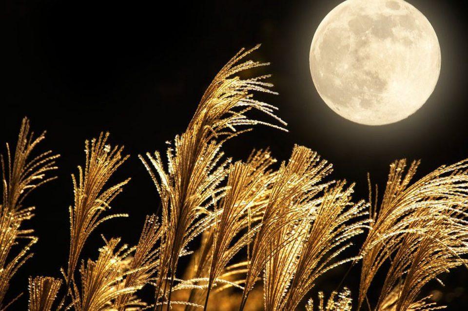 Ретка појава: Жетварска полна Месечина на петок 13-ти, еве што значи