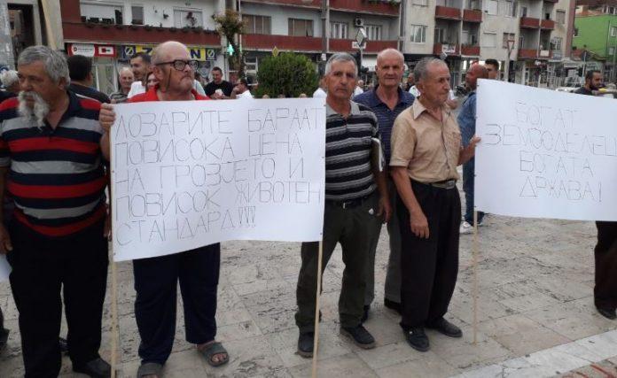 Лозарите од Неготино излегоа на протест: Да се прогласи елементарна непогода, суша и да се добие отштета од државата