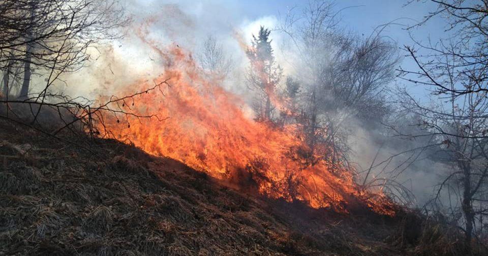 Во пожар кај Струмица изгореа комбајн, земјоделска механизација и овоштарник