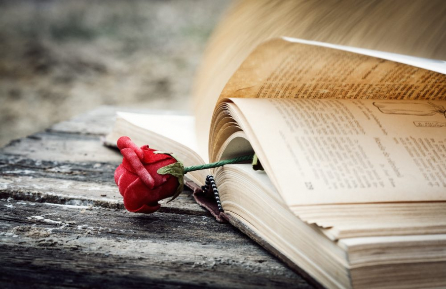 Најкратката и најтажната приказна на светот: Има само шест збора, но ќе ви го скрши срцето