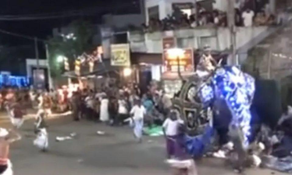 Слонови подивеа на прослава во Шри Ланка, 17 луѓе повредени (ВОЗНЕМИРУВАЧКО ВИДЕО)