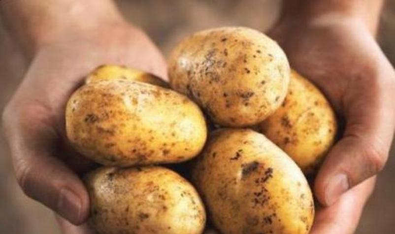 Сок од компир- чудесен лек за тешки болести