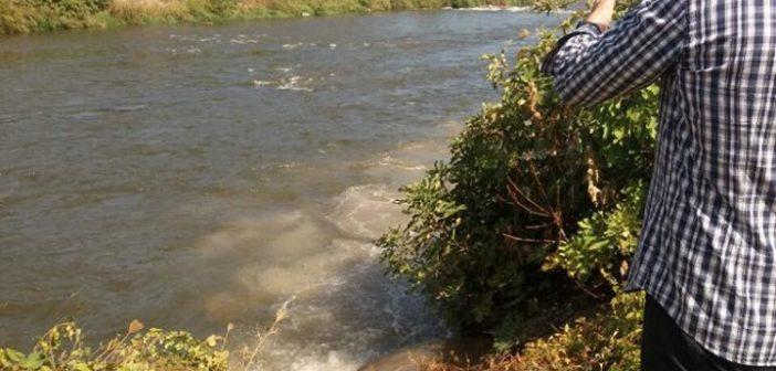 Реката Вардар смени боја, инспекциските екипи на терен поради помор на риби