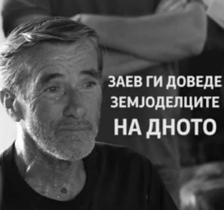 Мицкоски објави сведоштва на лозарите- еве како власта ги решава проблемите, се блеска само со лаги и криминали (ВИДЕО)