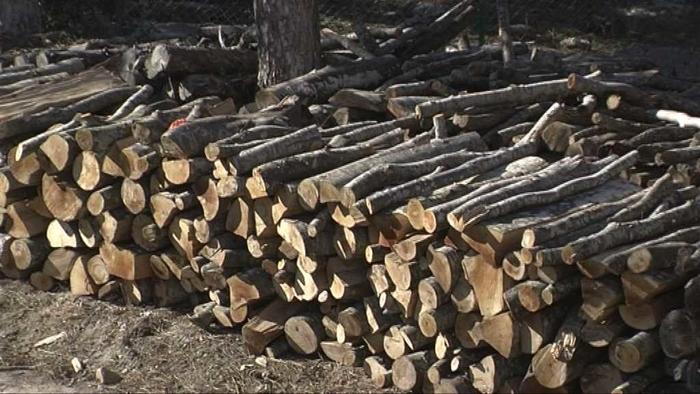 ВНИМАВАЈТЕ: Нуделе огревни дрва во скопско и Велес, па измамиле граѓани