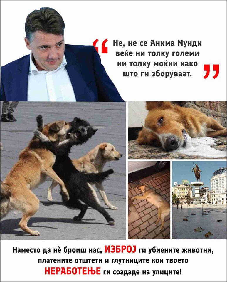 Анима Мунди до Шилегов: Место да не броите нас избројте ги убиените животни, платените отштети и глутниците кои вашето неработење ги создаде на улиците