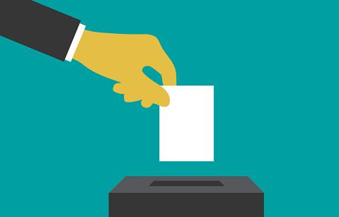 Ковчегарски: Изборен модел