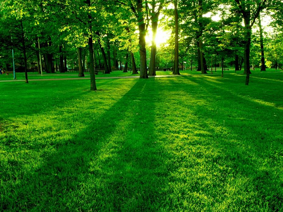 10 локации во Кавадарци кои ќе прераснат во зелени површини