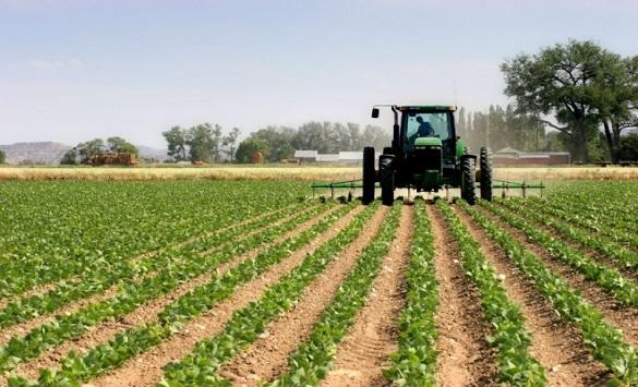 Опомени за земјоделците од Пијанец кои не го платиле закупот на државно земјиште