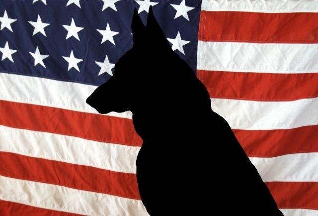 Трамп објави фотографија од кучето кое учествуваше во ликвидирањето на Ал Багдади