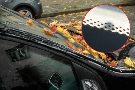 Дали знаете за што служат црните точки на шофершајбната – ретко кој на нив обрнува внимание