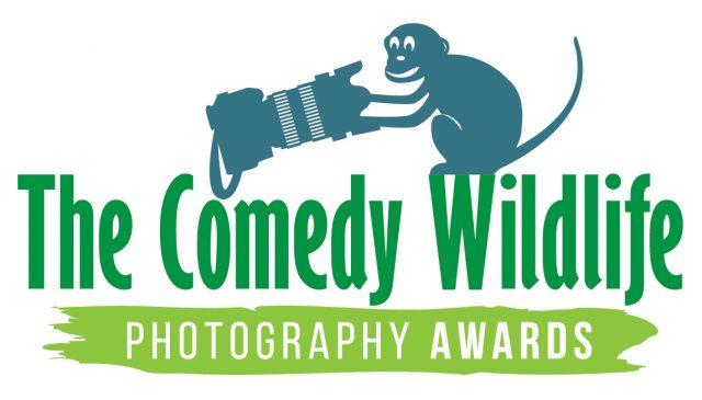 ФОТО: Најсмешни фотографии од светот на дивите животни