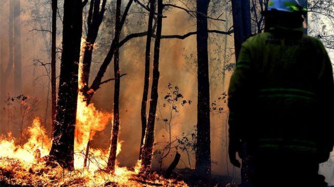 Пожарникар волонтер обвинет за подметнување пожари во Австралија
