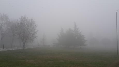 Еко герила: Граѓаните ни праќаат фотографии од загадувањето секој ден
