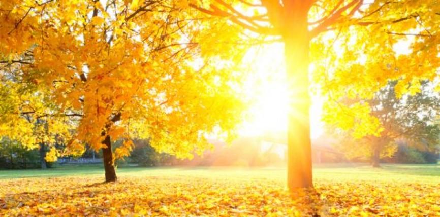 Изминатиот месец е најжешкиот октомври регистриран досега на планетата