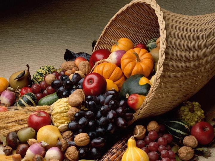 Американците го слават Денот на благодарноста, Индијанците Денот на жалоста