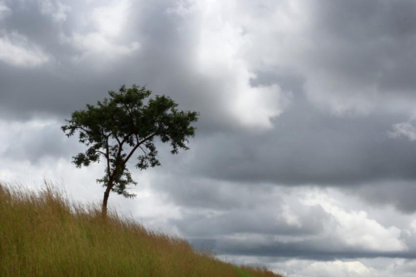 Облачно, ветровито и натпросечно топло