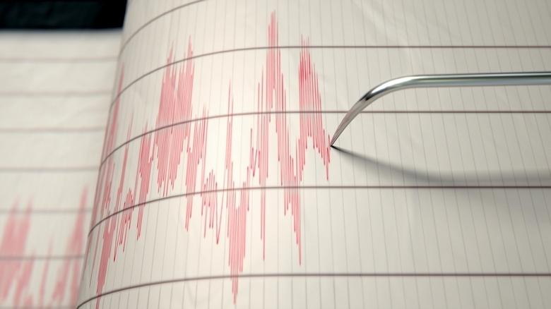 Земјотрес со јачина од 4,5 степени ја потресе Албанија