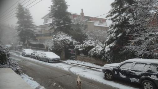 Падна првиот снег во северна Грција