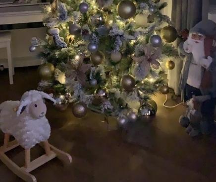 Како од бајките: Кога ќе видите каква новогодишна елка имаат во домот Александра Пријовиќ и Филип ќе останете без зборови (ФОТО)