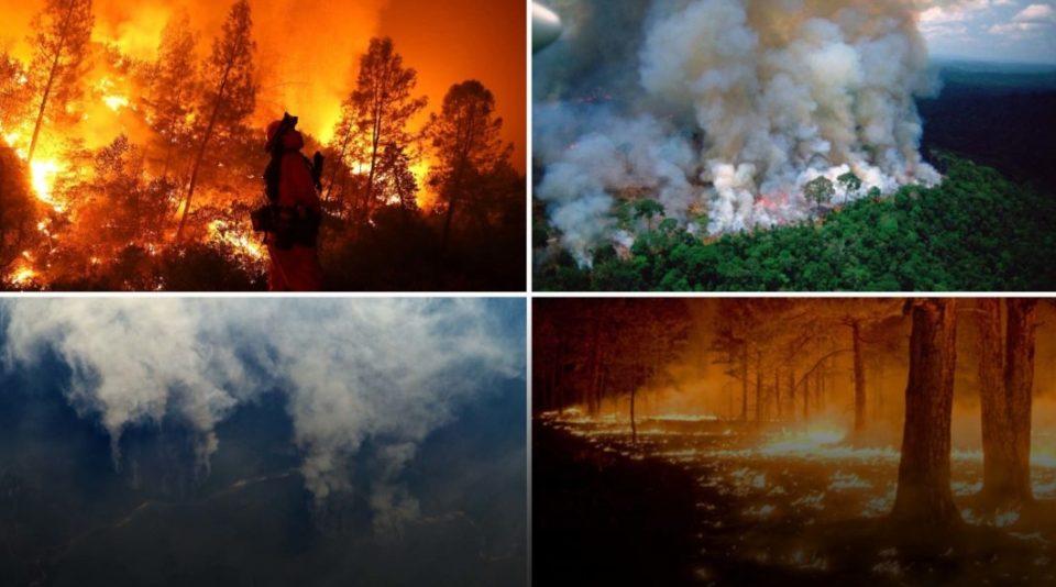 Амазонија гореше, светот обвинуваше, Бразил се бранеше
