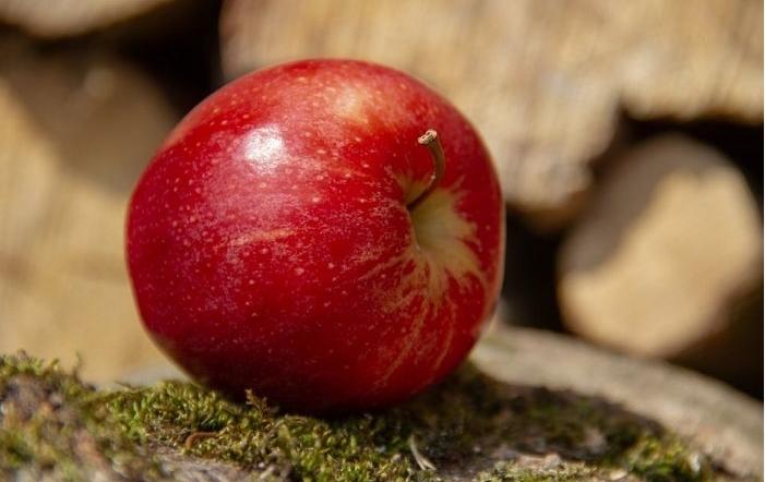 Доволно е само едно јаболко на ден: Еве што ве очекува…