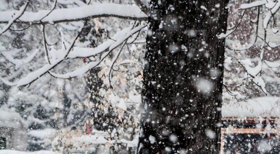 УХМР со предупредување дека доаѓа снегот- еве ја деталната временска прогноза за цела недела