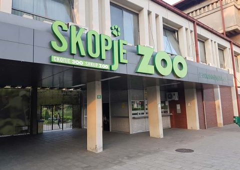 Во ЗОО- Скопје се роди првото бебе годинава (ФОТО)