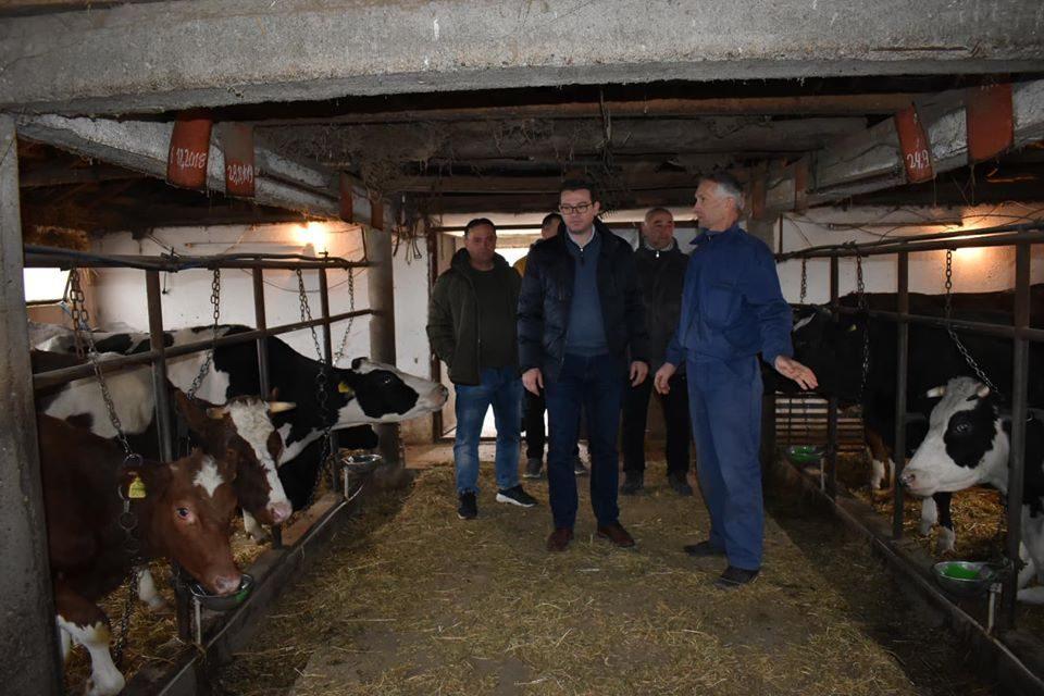 Трипуновски: Катастрофалните политики и негрижата за земјоделците ги приморува фармерите да го намалат бројот на стока па дури и да ги затворат фармите