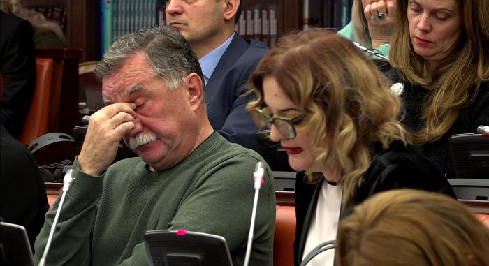 Павлова Данева: Се прави мешање на законодавната власт во извршната власт