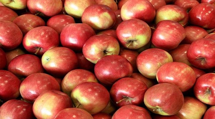 Јаболко, ореви, грав, овес, лук – ова ќе ви помогне за голем проблем со здравјето кој многумина го имаат