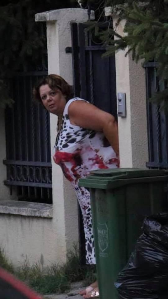 Анализа: На што се должи кочијашкиот вокабулар на Катица Јанева?