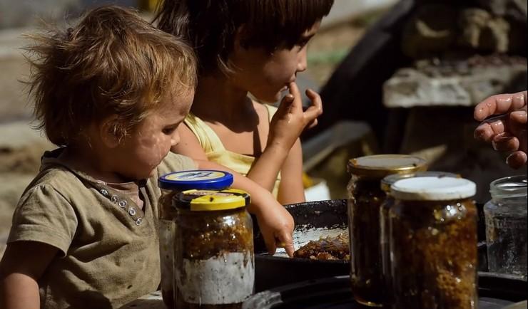 """Одлична промоција: Филмот """"Медена земја"""" го зголеми интересот за македонскиот мед"""