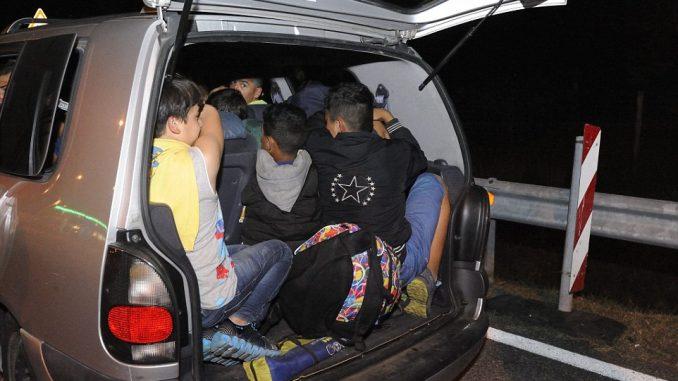 Кај Струмица, полицијата фати комбе со 53 мигранти