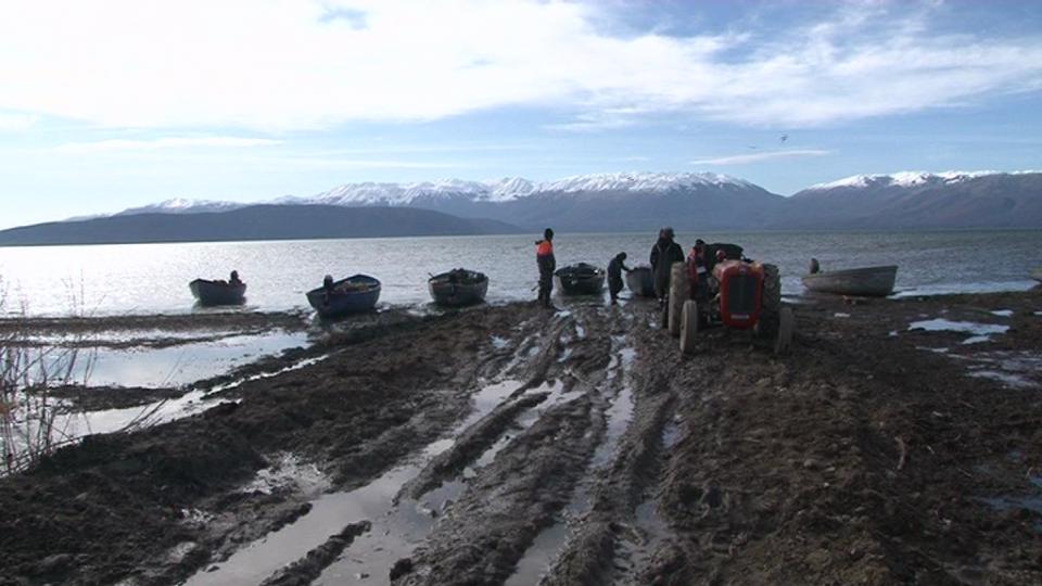 Преспанско езеро пред катастрофа- дали ќе ја доживее судбината на Балатон?