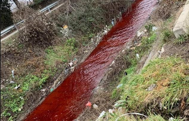 Вонреден инспекциски надзор: Зошто Серава денес е црвена?