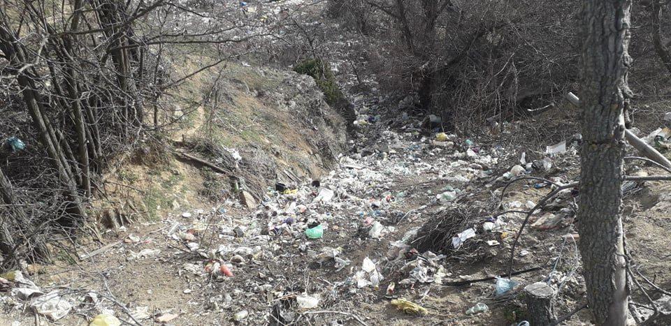 ФОТО: Востаничко Разловци сардисано од ѓубре