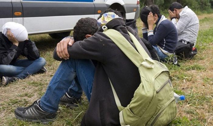 Претреси во Лојане и Ваксинце: Приведени три лица, пронајдени 28 мигранти