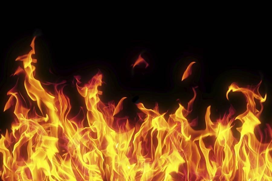 Голем пожар во Струга, опожарена езерска трска во должина од 400 метри
