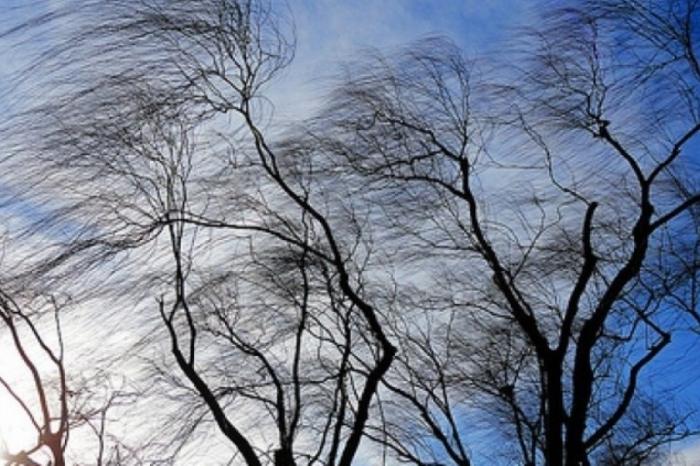 Сончево и ветровито време, утре дожд – викендов пад на температурите