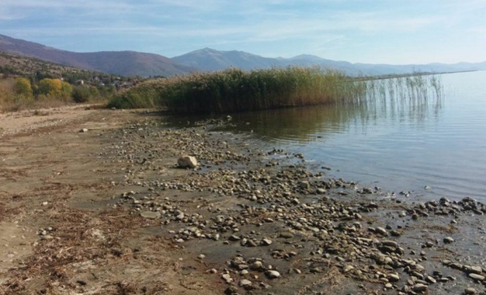 Преспанското Езеро и понатаму под минимумот, извесно намалување на нивото и кај реките