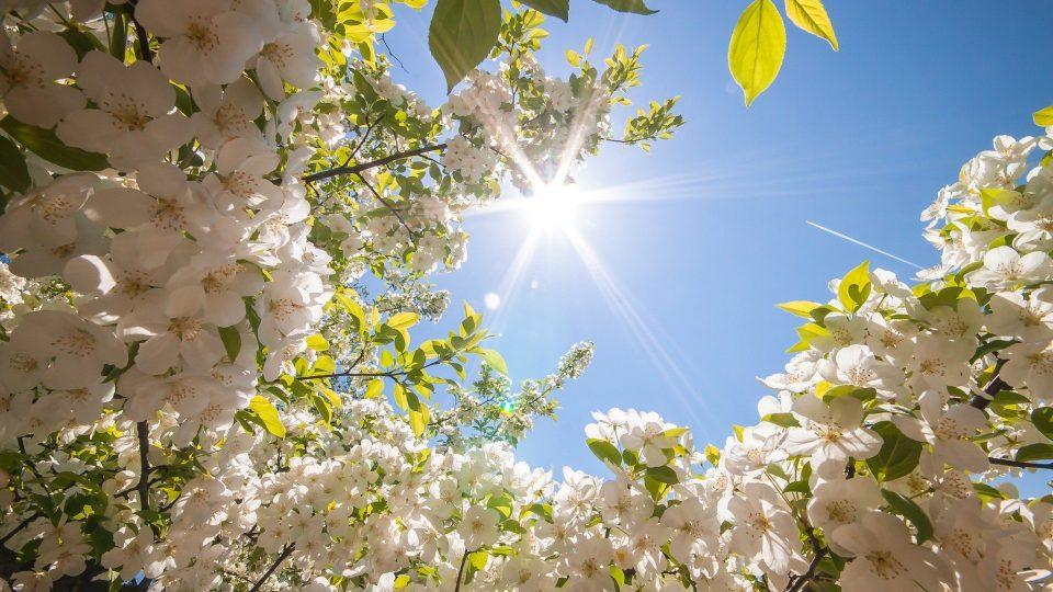 Денеска сончево и топло- еве какво време не очекува во следните денови, особено од понеделник