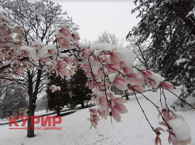 Дожд и сонце подеднакво, но и снег- временска за месец април, особено подгответе се за тоа што ни доаѓа по Велигден (ФОТО)