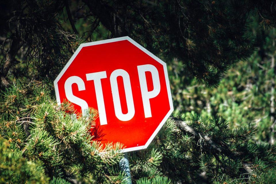 Од денеска забрана за движење во шуми во периодот од 06 до 20 часот
